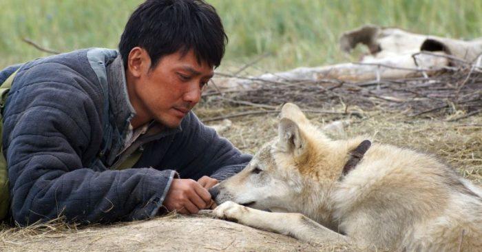 ultimo lupo