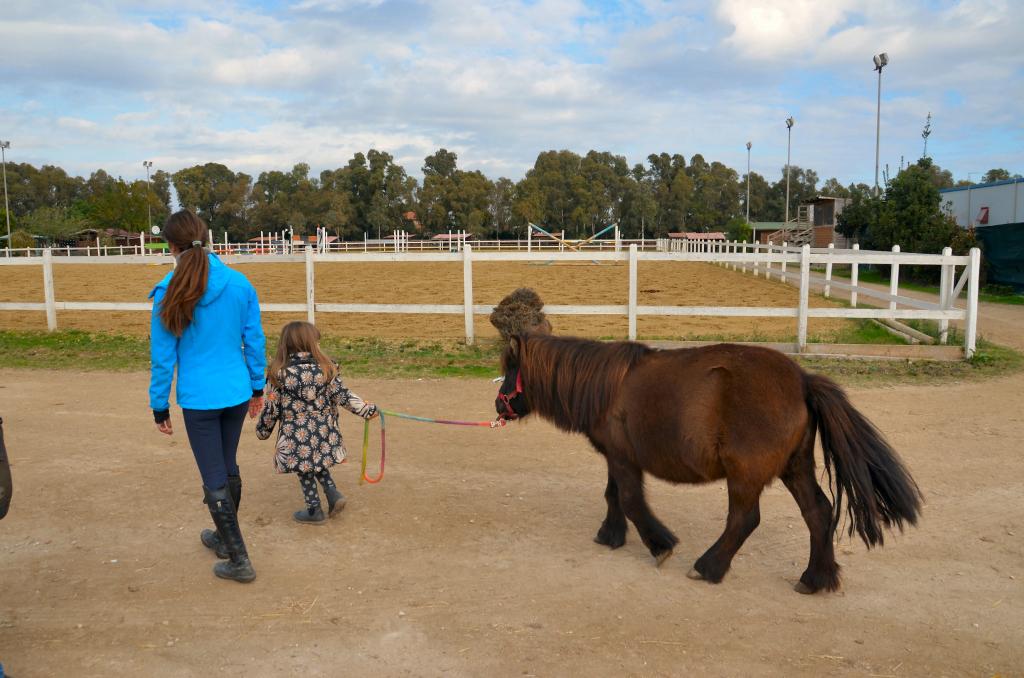 Associazione equestre Il Castello