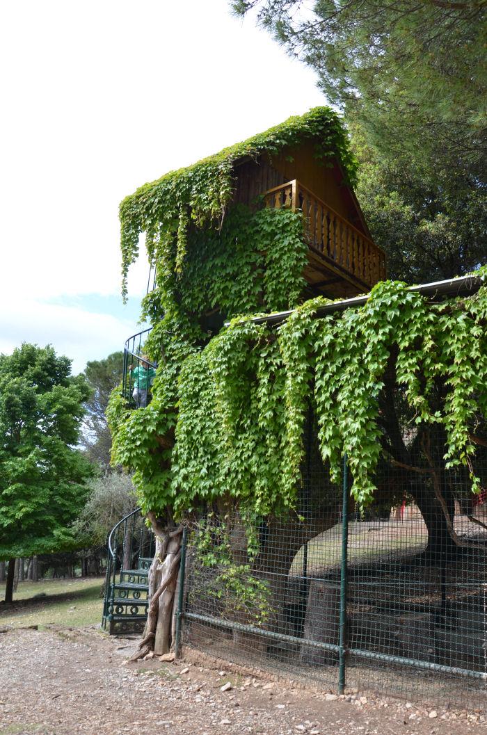 citta_della_domenica_casa_albero