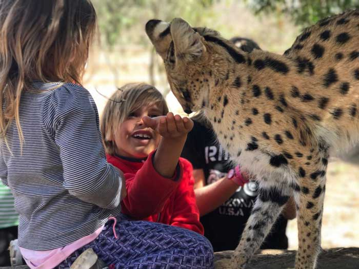 Safari con i bambini riserve