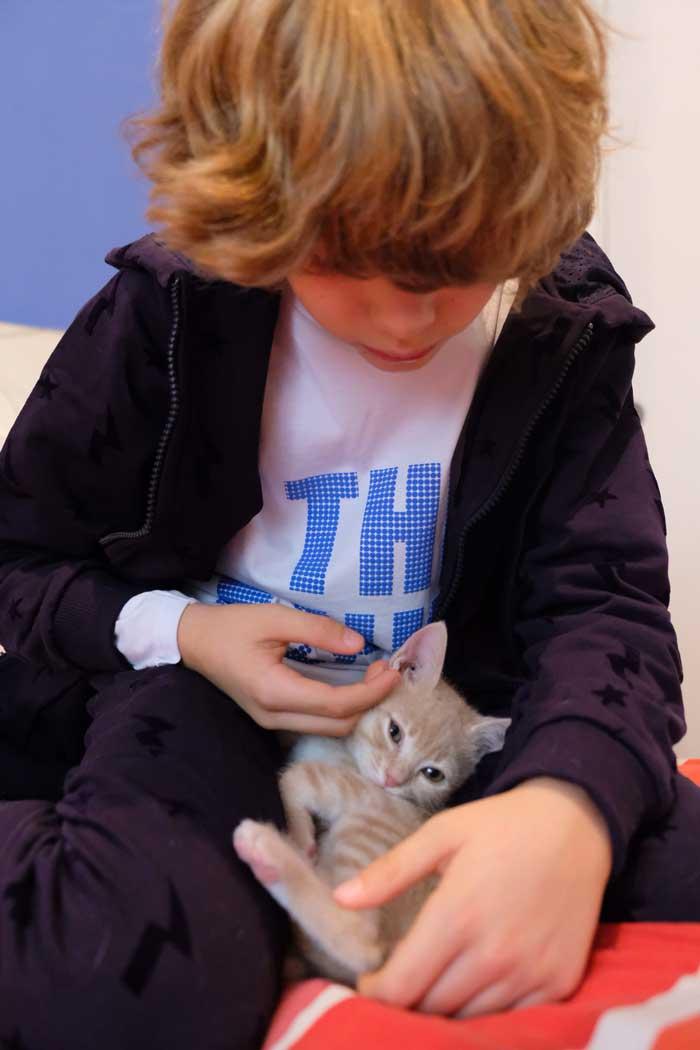 bambini-e-gatti-effetti benefici